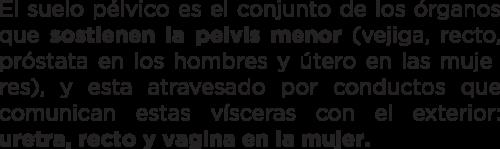 Suelo-Pelvico-nieto-fisiofitness-2